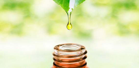Kosmetyki z naturalnymi olejkami roślinnymi